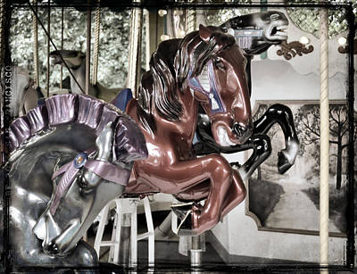 Photograph - Copper Carousel Art by JAMART Photography