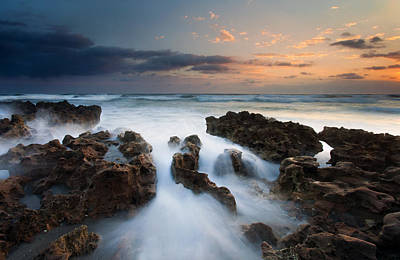 Coral Cove Dawn Print by Mike  Dawson