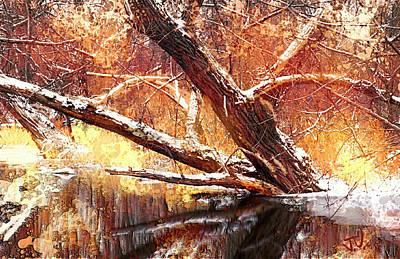 Photograph - Cordukes Creek  by Jim Vance