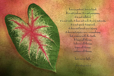 Caladiums Photograph - 1 Corinthians 13 Love by Bonnie Barry
