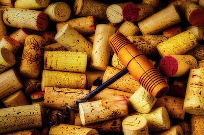 Photograph - Corkscrew And Wine Corks by Garry Gay