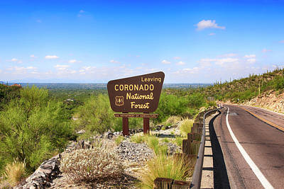 Photograph - Coronado National Forest Az by Chris Smith