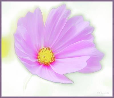 Digital Art - Cosmos Flower In Full Bloom, Bud by A Gurmankin