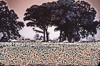 Digital Art - Cotton And The Broccoli Trees by Michael Thomas