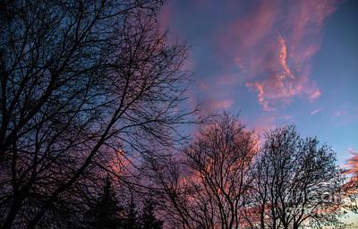 Photograph - Cotton Candy Sky by Cheryl Baxter