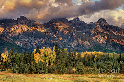Photograph - Cottonwoods And Fir Trees Fall Color Grand Tetons National Park Wyoming by Dave Welling