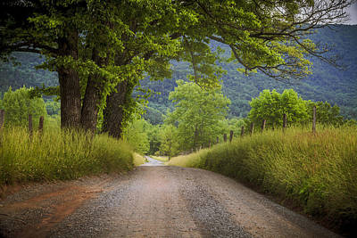 Leaves Photograph - Country Lane In The Smokies by Andrew Soundarajan