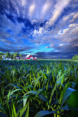 Hope Photograph - Country Living by Phil Koch