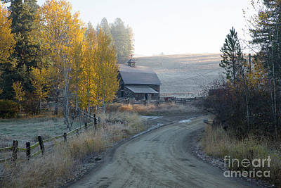Photograph - Country Morning by Idaho Scenic Images Linda Lantzy