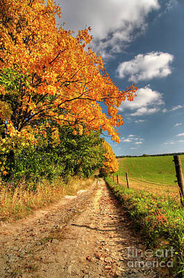 Country Road And Autumn Landscape Art Print by Michal Boubin