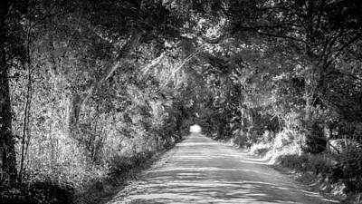 Photograph - Country Road by Louis Ferreira