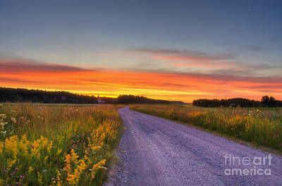 Rural Art Photograph - Country Road by Veikko Suikkanen