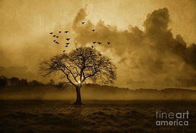 Flock Of Bird Mixed Media - Country Sunrise by KaFra Art