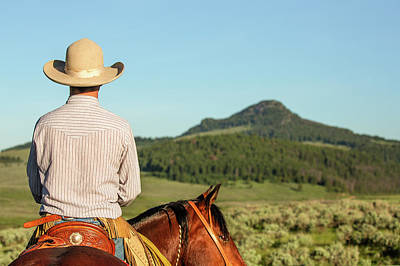 Horse Back Riding Photograph - Cowboy Back by Todd Klassy