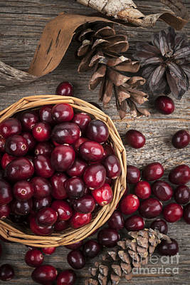 Still Life Royalty-Free and Rights-Managed Images - Cranberries in basket by Elena Elisseeva