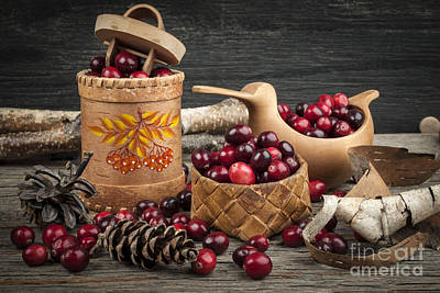 Red Berries Photograph - Cranberries Still Life by Elena Elisseeva