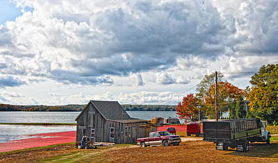 Storm Clouds Cape Cod Photograph - Cranberry Farming by Gina Cormier