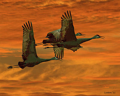 Cranes At Sunrise Art Print