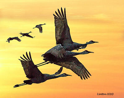Crane Digital Art - Cranes At Sunset by Larry Linton