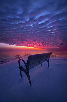Photograph - Creation Itself Will Be Set Free by Phil Koch