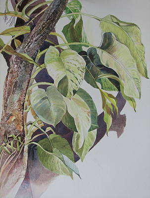 Sri Lankan Artist Painting - Creepers by Sasitha Weerasinghe