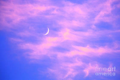 Crescent Moon Behind Cirrus Cloud In The Evening Art Print by Gordon Wood