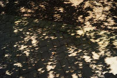 Photograph - Crescents 4 by Rodney Lee Williams