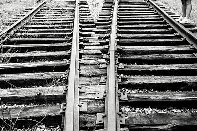 Photograph - Crossing Tracks by Karol Livote