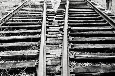 Photograph - Crossing Tracks by Karol Livote