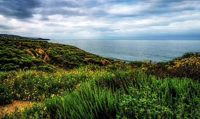 Photograph - Crystal Cove Beach View by Joseph Hollingsworth