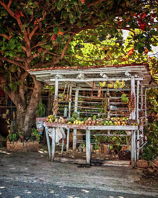 Art Print featuring the photograph Cuban Fruit Stand by Joan Carroll