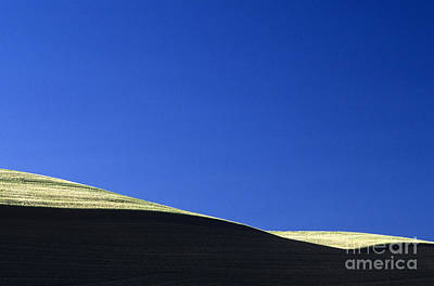 Photograph - Cultivated Wheat Field Abstract by Jim Corwin