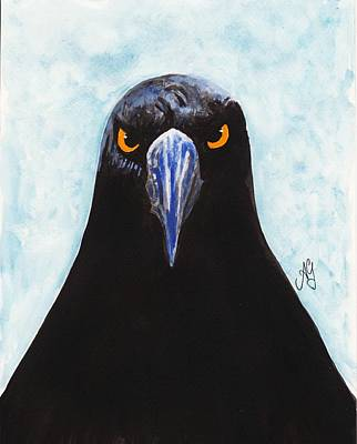 Painting - Currawong by Anne Gardner