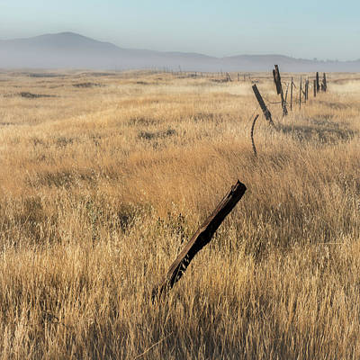 Barbed Wire Fences Photograph - Cuyamaca Fenceline by Joseph Smith