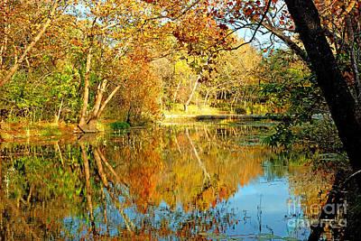 Photograph - Cypress Reflections by Robert Anschutz