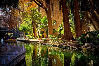 Cypress Trees In The Riverwalk Print by Iris Greenwell