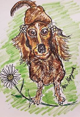 Dachshund Puppy Drawing - Dachshund  by Geraldine Myszenski