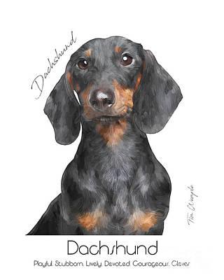 Digital Art - Dachshund Poster by Tim Wemple
