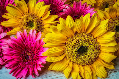 Photograph - Daises And Sunflowers by Garry Gay