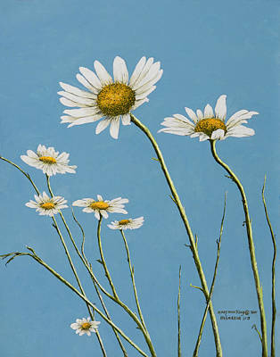 Daisies In The Wind Art Print
