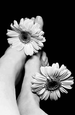 Photograph - Daisy Toes by Diana Angstadt
