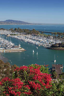 Photograph - Dana Point Harbor by Cliff Wassmann