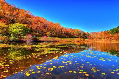Fall Foliage Photograph - Dance Of Colors by Midori Chan