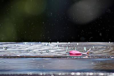 Photograph - Dancing Water by Lisa Knechtel
