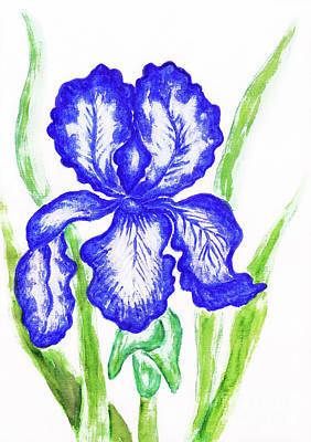 Painting - Dark Blue Iris, Painting by Irina Afonskaya