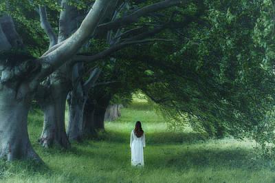 Fairy Photograph - Dark Forest by Joana Kruse