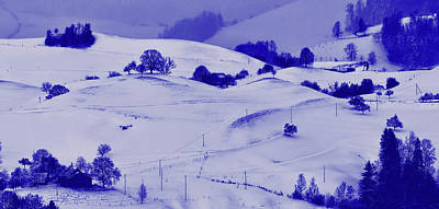 Photograph - Dark Lines Of Winter by Unsplash