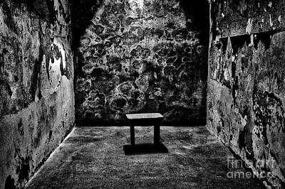 Photograph - Dark Solitary by Paul W Faust -  Impressions of Light