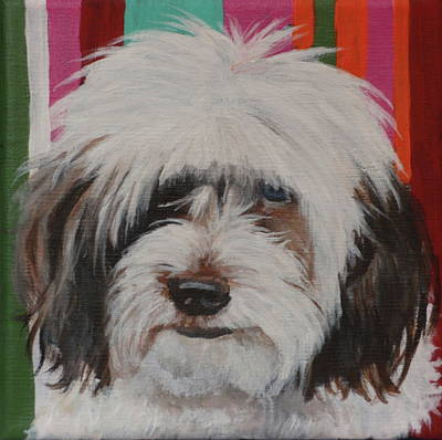 Painting - Darla by Carol Russell