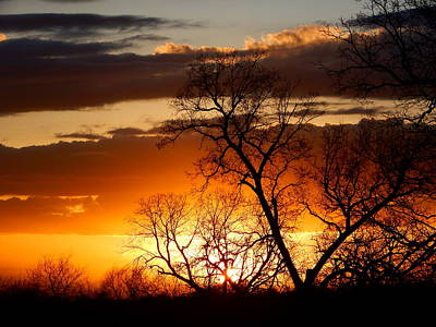 Photograph - Days End by Virginia Kay White